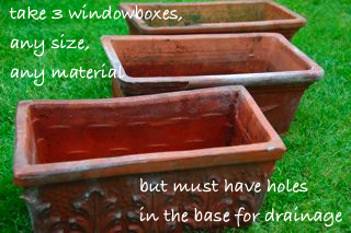 windowsill vegetable garden - select containers