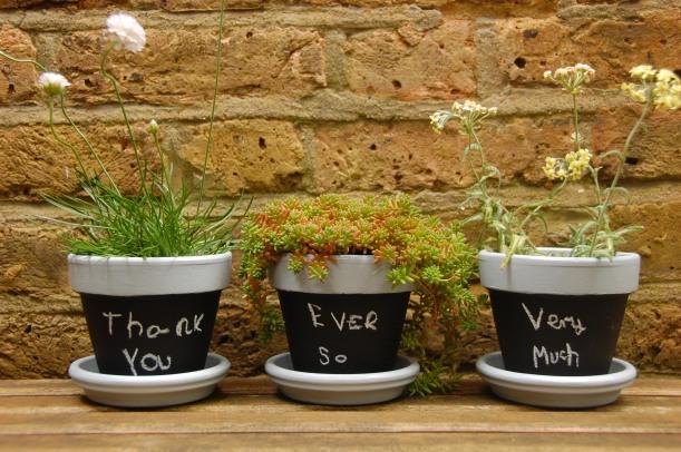 blackboard plant pots