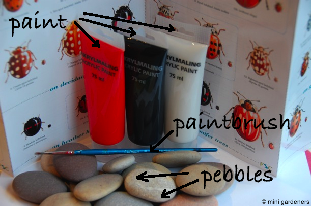 needed for painted ladybird pebbles