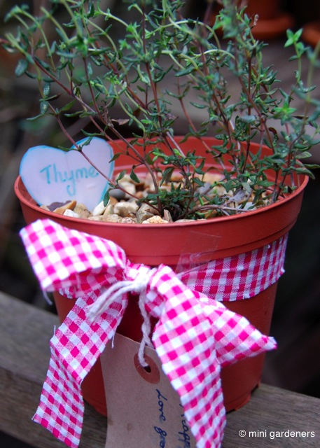 thyme mother's day gift