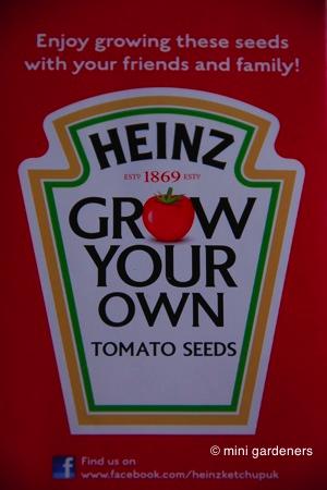 San Marzano tomato seed