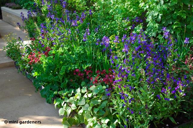 growing veg in flower beds chelsea flower show 2013