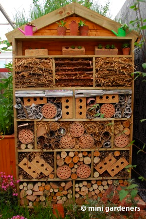 insect house chelsea flower show 2013