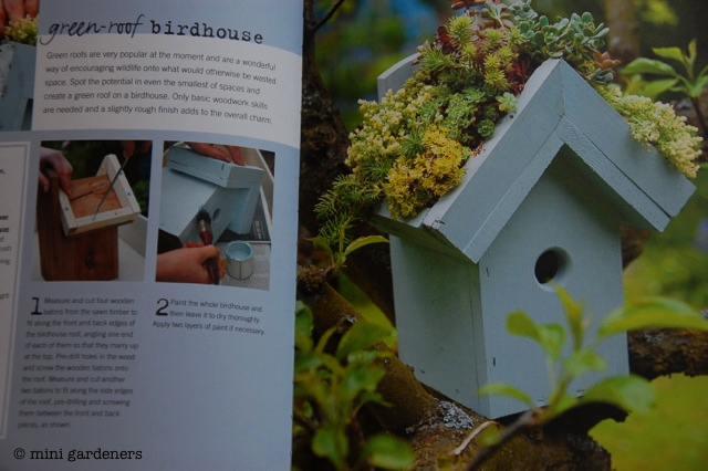 green roof birdhouse from Teeny Tiny Gardening