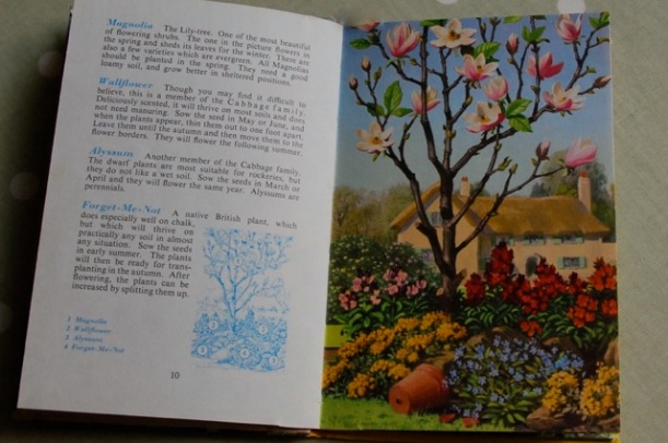 ladybird book of garden flowers